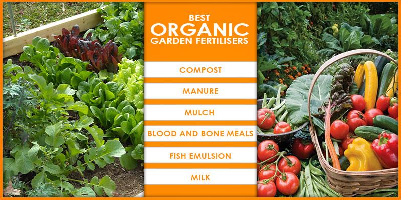 best organic garden fertilizers