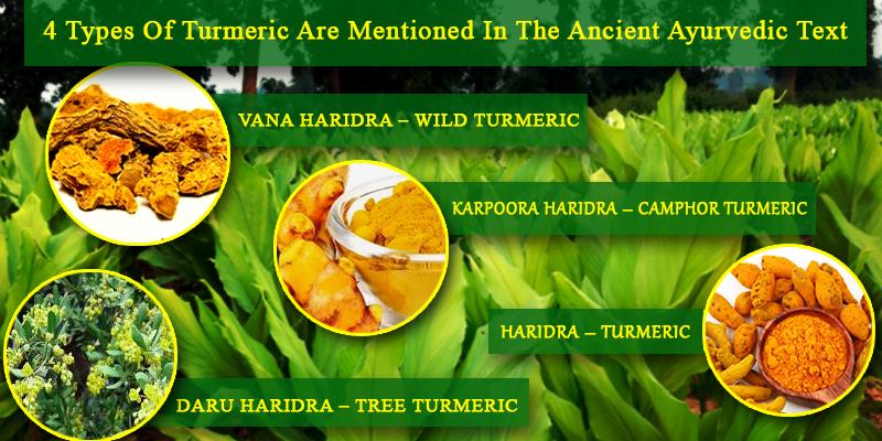 Legends of Turmeric
