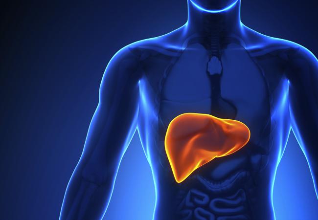 Livturm for healthy liver & healthy you