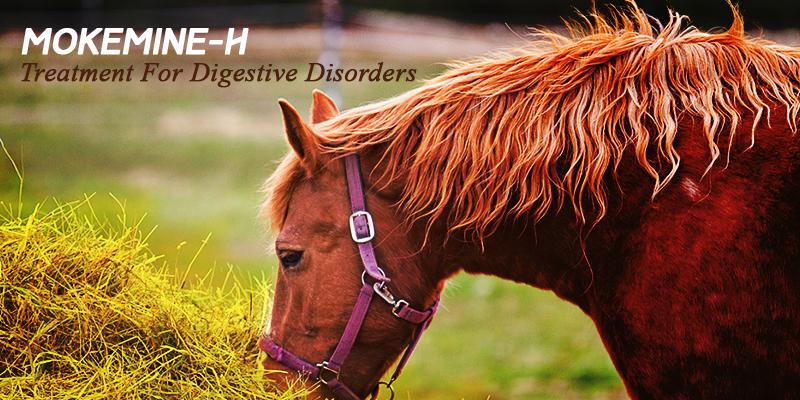 Mokemine-H for digestive disorders in horses